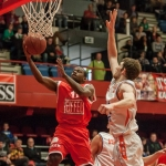 andre young den bosch